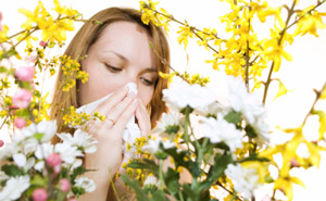 Sinus and Allergies